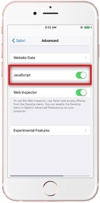 Enable Javascript on an iPhone