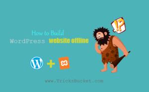 build a WordPress website offline