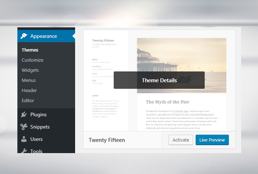 Second step delete WordPress theme