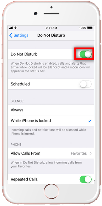 iPhone do not disturb enable manually